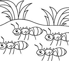 Coloring Pages Ant Trustbanksurinamecom