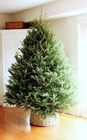 10 Plus DIY Christmas Tree Containers