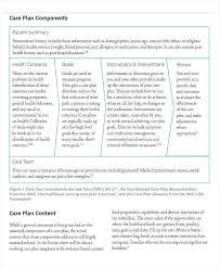 Nursing Care Plan Template Pdf 2019 Simple Pretty Teaching