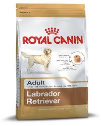 Buy Royal Canin Adult Labrador Dog Food 12 Kg Online At
