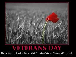 Great Quotes For Veterans Day. QuotesGram