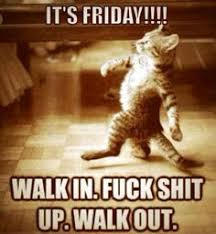 Friday bitches! on Pinterest   Friday Memes, Happy Friday and Tgif via Relatably.com