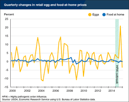 Egg Price Chart Circumstantial Egg Price Chart 2019