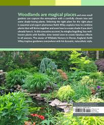 Small Picture Designing and Planting a Woodland Garden Plants and Combinations
