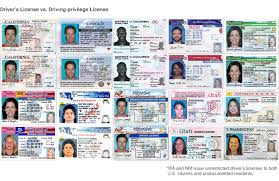 Immigrants' Changing Valuepenguin Licenses Driver's Access - Undocumented To