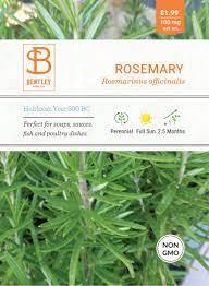 Rosemary   Bentley Seeds