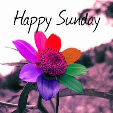 happy sunday good morning images photo pics pictures hd free
