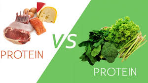 Protein In Vegetables Vs Meat Chart Protein Meat Vs Plants Whats The Difference Mark Chen