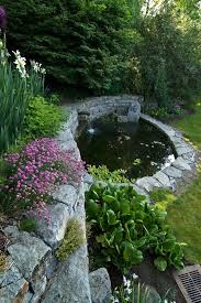 Small Picture 12 best Pond Design images on Pinterest Garden ideas Pond ideas