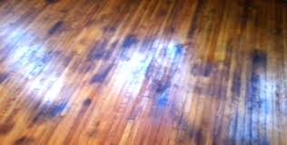 how to remove black urine stains from hardwood floors idea removing pet on cleaning off hardwood floor cleaning engineered wood flooring wax remove