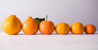 Mandarin Tangerines Know Your Mandarins Nugget Markets Daily Dish