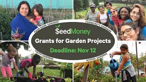 this fall seedmoney will be awarding over 200 garden grants ranging in size from 100 500 to us based and global food garden projects