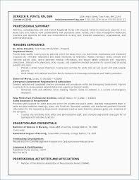 Resume Format Blank Inspiration ⛃ 44 Professional Resume Template