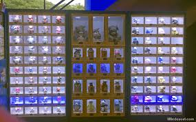 Vending Machine Ideas 2017 Amazing Vending Machines In Singapore 48 Unusual Items You Can Buy