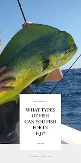 What Types Of Fish Can You Fish For In Fiji Fiji Pocket Guide
