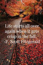 Fall Quotes Delectable Here's To OctobersAnd Young Divorcees Seasons Fall Crush