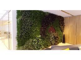 living plant walls winya