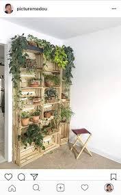 Pin de Arnold Cerrato Ortiz en plant lady | Decoración de casa con ...