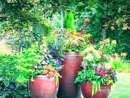 home depot container fairy garden containers broken pot get rid of birds home depot container herb