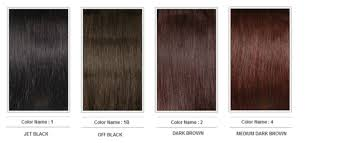 Colour Chart Hair City