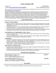 Engineering Manager Resume Example Resume Formats