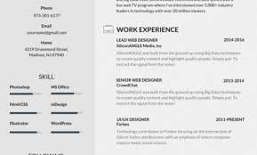 Good Resume Layout Mesmerizing 44 Most Professional Editable Resume Templates For Jobseekers R