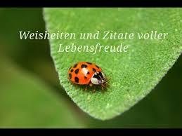 Weisheiten Und Zitate Voller Lebensfreude Mit Naturfotos Kraft