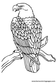 Small Picture Cool Eagle Coloring Pages Cool Book Gallery Id 7440 Unknown