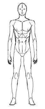 There are literally hundreds of super talents in the anime. Anime Male Anatomy Reference Materi Pelajaran 8