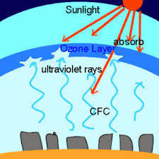ozone layer depletion the ozone layer depletion