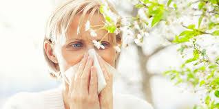 Top 3 Natural Strategies to Beat Seasonal Allergies | Garden of Life