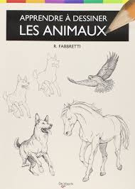 Amazon Fr Apprendre Dessiner Les Animaux Anatomies