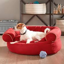 The End of Dog Beds