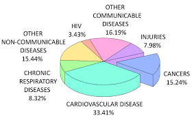 1 Pie Chart Showing Worldwide Causes Of Death As Percentages