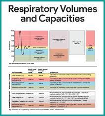 Respiratory Medications Chart Pin By Bobby T On Anatomy Respiratory System Anatomy