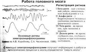 АНАЛИТИЧЕСКАЯ РАБОТА это что такое АНАЛИТИЧЕСКАЯ РАБОТА  Работа головного мозга бета альфа тета дельта ритм