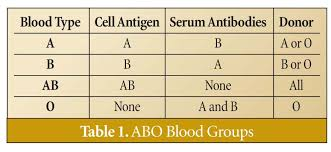 Blood Type Offspring Chart Specific Blood Types Chart For Offspring Blood Type Heredity