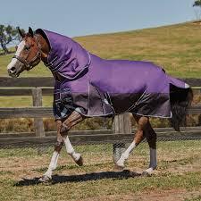 Horse Turnout Blanket Size Chart Weatherbeeta Comfitec Plus Dynamic Detach A Neck Medium Weight Turnout Blanket