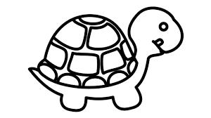 33+ Tranh tô màu con rùa đáng yêu cho bé tập tô