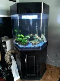 Hexagon Aquarium Tank Gallon Fish For Sale Free House