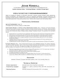 Information Technology Resume Sample Director Of It Resume