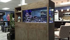 Fishtank furniture Diy Aquarium Furniture Makes Splash At Jordans Wpro Aquarium Furniture Makes Splash At Jordans Wpro