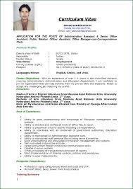Resume Example For Applying Job Cv Application Curriculum Vitae