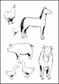 Free Printable Farm Animals Beautiful Baby Farm Animal Coloring