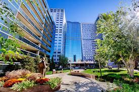 Residencies And Fellowships Academics Mayo Clinic