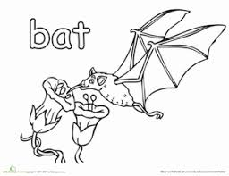 Small Picture Fruit Bat Worksheet Educationcom