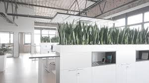 modern office plants. Modern Office Plants Appcom Marketing U0026 Interactive | Interior  Design Modern Office Plants S