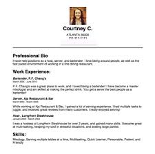 Fill In Resume