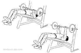 Decline Barbell Bench Press | WorkoutLabs