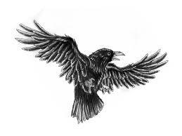 Crow Tattoo Sketch Tattoo Black Crow Tattoos Crow Tattoo Design